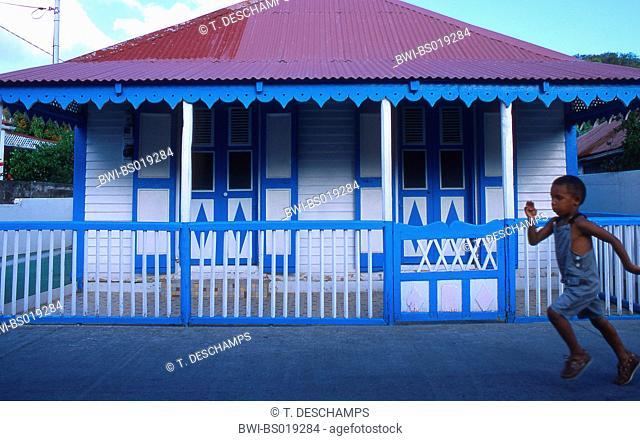 box running in front of blue painted house, Guadeloupe, Les Saintes Islands
