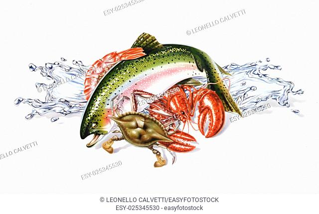 Group composition of different seafood and fish, with water splashes. Airbrush illustration. On white background with drop shadow