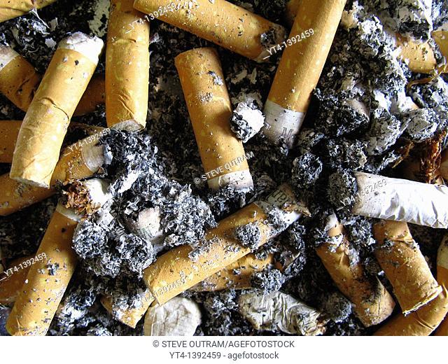 Cigarettes in Tray