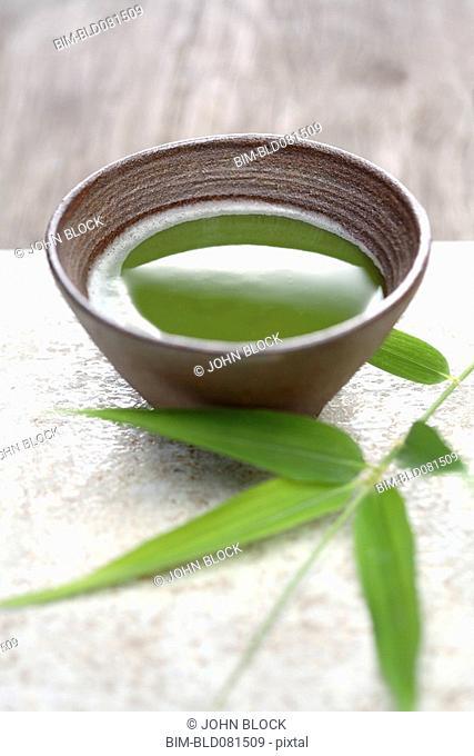 Close up of Japanese green Matcha tea and bamboo sprig