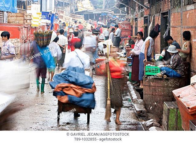 Fish market in Yangon Mynmar