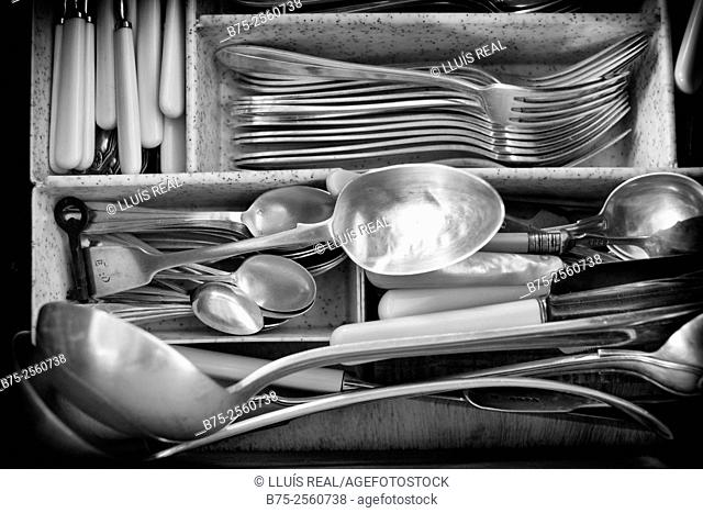 Cutlery in a drawer full of silverware. fish cutlery, knives, spoons, holders, dessert cutlery, coffee spoons and several serving utensils