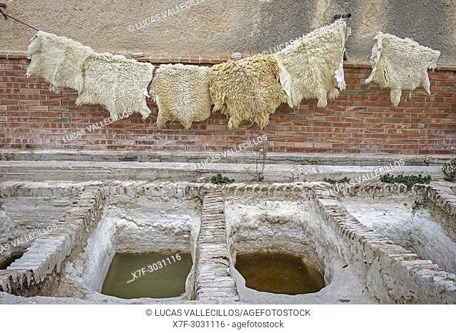 Skins hung to dry, tannery, medina, UNESCO World Heritage Site, Tetouan, Morocco