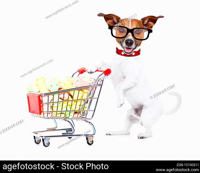 jack russell dog pushing a shopping cart full of tasty treats and cookies , isolated on white background