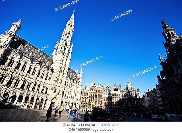 Grande place, Town Hall, Groote Markt, Bruxelles, Brussels, Belgium