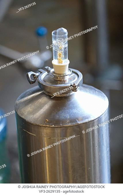 EUGENE, OR - NOVEMBER 4, 2015: Small yeast fermenter at the startup craft brewery Mancave Brewing