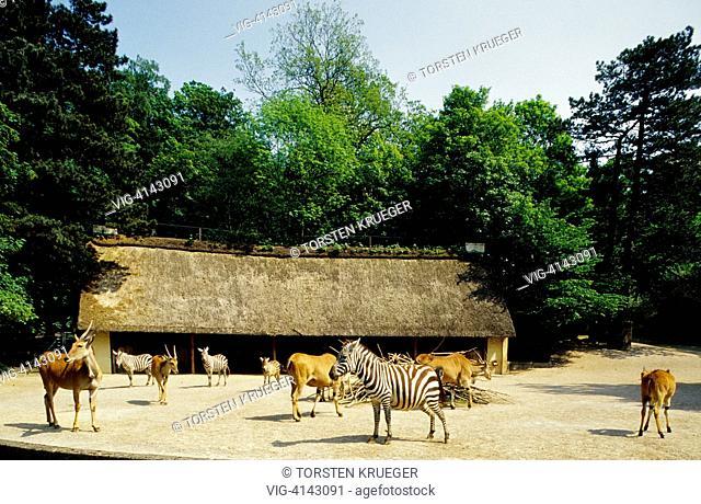 Germany, Wuppertal : Zoo