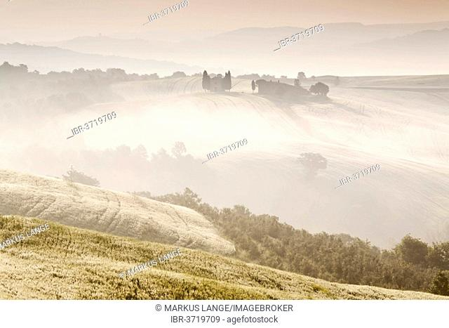 Cappella di Vitaleta in the morning mist, Val d'Orcia region, Province of Siena, Tuscany, Italy