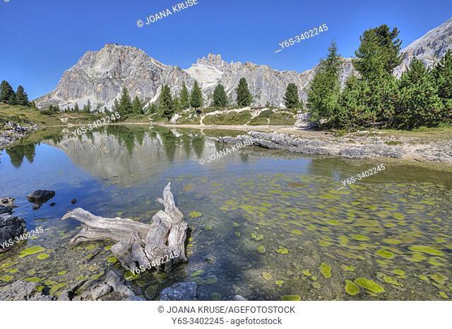 Lago di Limides, Cortina d'Ampezzo, Belluno, Veneto, Dolomites, Italy, Europe