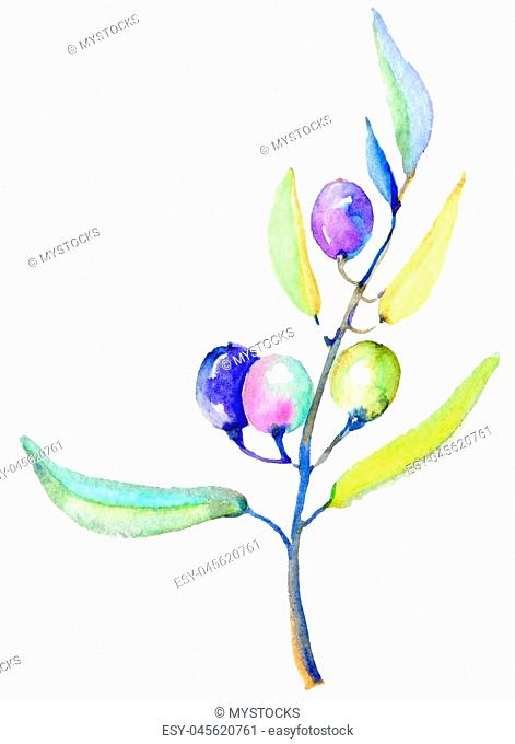 Olive branches in a watercolor style isolated. Full name of the plant: Branches of an olive tree. Aquarelle olive tree for background, texture, wrapper pattern