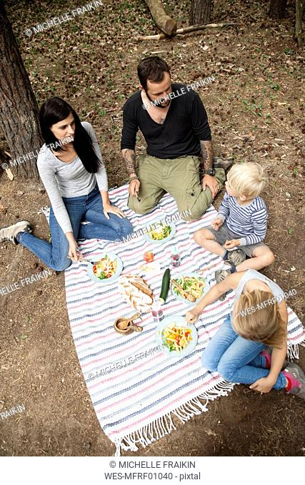 Family having a picnic in forest
