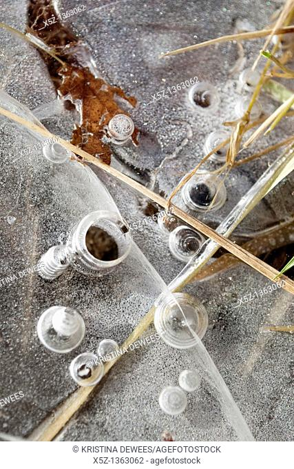 Bubbles frozen in layers of ice along a stream