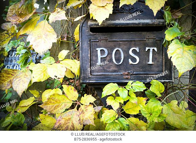 Potstbox and leaves. Buckden, North Yorkshire, Yorkshire Dales, Skipton, UK
