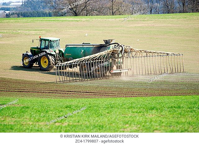 Fertilising, spreading manure byt tractor over fields