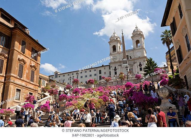 Pots of azaleas in blossom, Spanish Steps, Scalinata della Trinita dei Monti, Piazza di Spagna, Rome, Italy