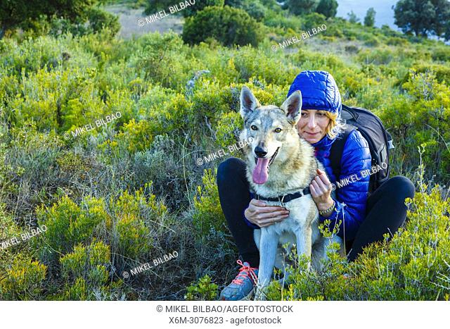 Woman in outdoor with a Czechoslovakian wolfdog. Tierra Estella County, Navarre, Spain, Europe