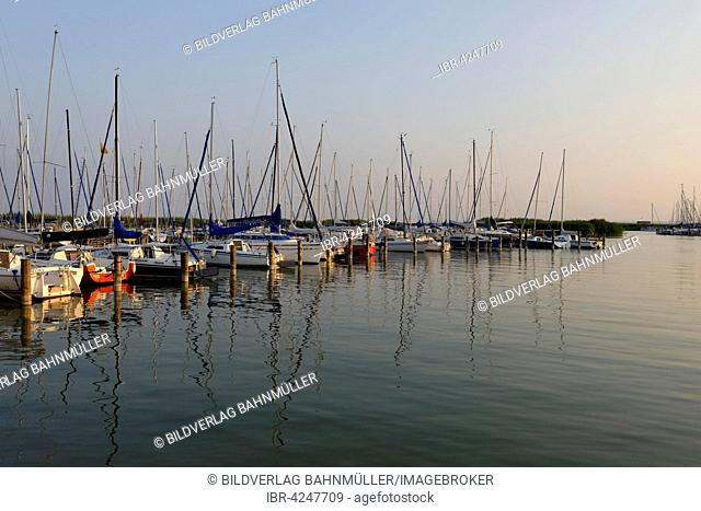 Marina on Lake Neusiedl, seaside resort Breitenbrunn, Burgenland, Austria