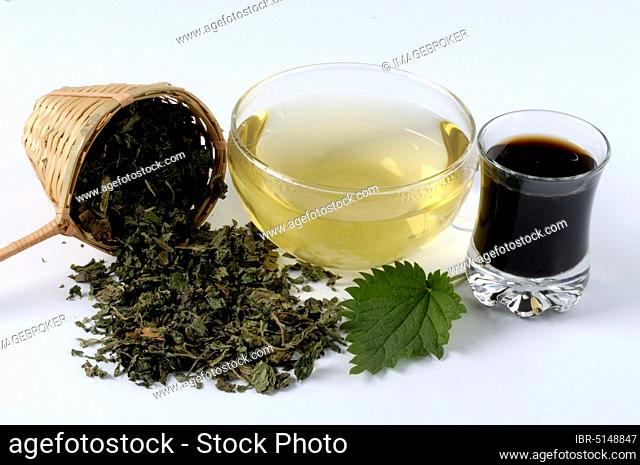 Glass with nettle juice, cup with nettle tea and dried leaves (Urtica dioica)