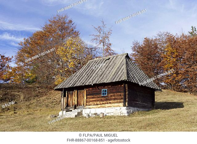 Wooden cabin and trees with Autumn colour, Tara National Park, Serbia, October