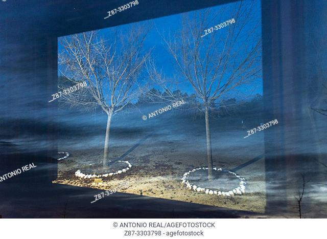Window and trees. Almansa. Albacete province, Castile-La Mancha, Spain
