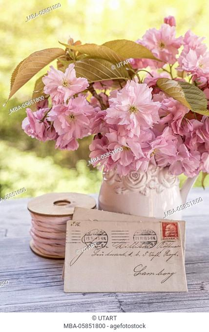 Old white vintage jug with Japanese flower cherry on white woodwork boards, old letters to vase leant, cotton reel with pink thread for decoration, close-up