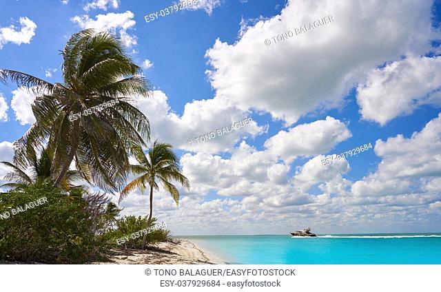 Holbox Island paradise beach palm trees in Quintana Roo of Mexico