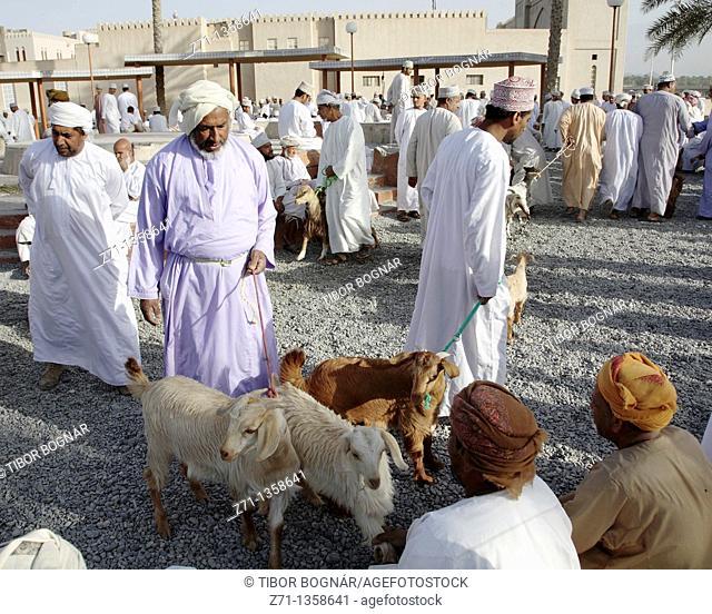 Oman, Al-Dakhiliyah, Nizwa, livestock souq, goats, people