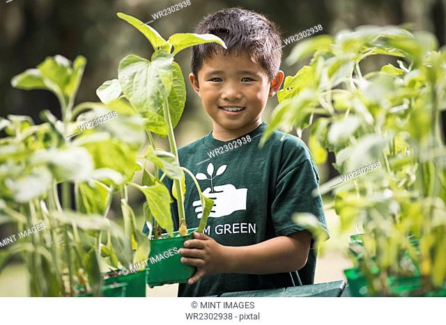 A boy with young plants in a plant nursery