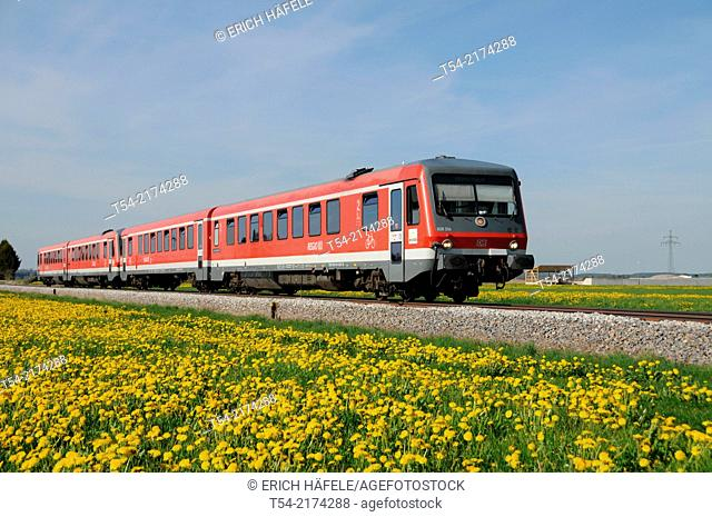 Railcar of the Deutsche Bahn ago dandelion meadow
