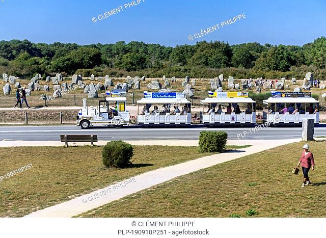 Tourist train during sightseeing tour driving past the Ménec alignments, megalithic site among the Carnac standing stones, Morbihan, Brittany, France