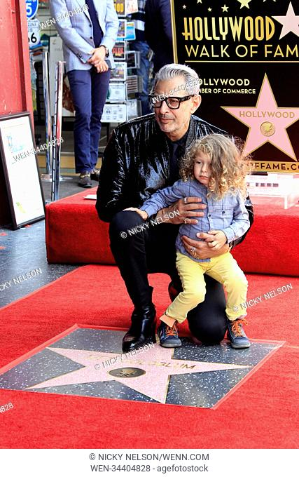 Jeff Goldblum Honoured With A Star On The Hollywood Walk Of Fame Stock Photo Picture And Rights Managed Image Pic Wen 34404828 Agefotostock