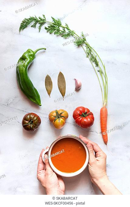Hands holding cooking pot of tomato soup, ingredients