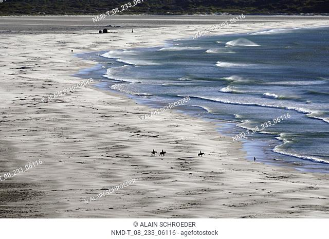 High angle view of a beach, Noordhoek Beach, Cape Town, Western Cape Province, South Africa
