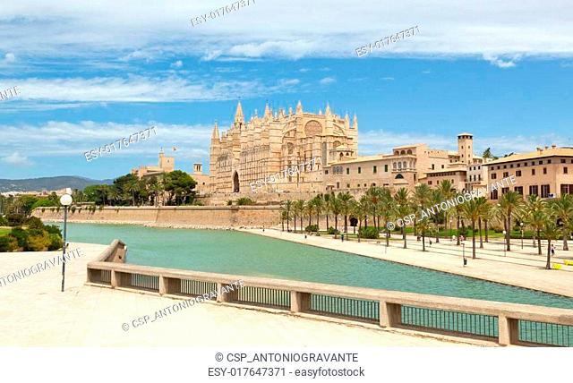 Majorca La seu Cathedral
