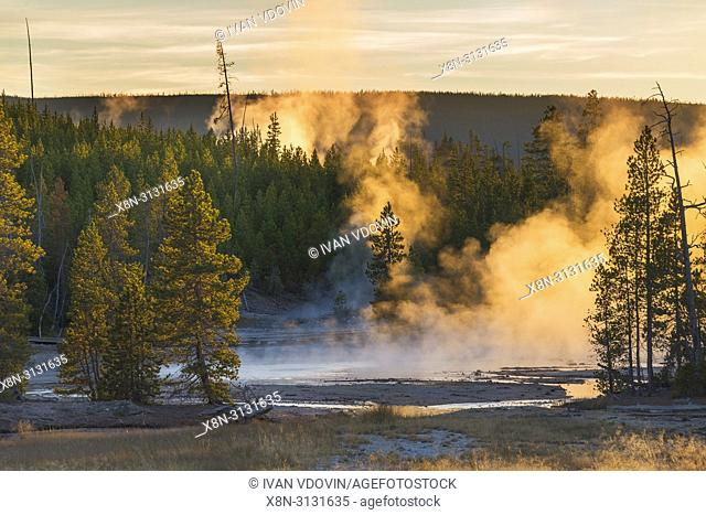 Norris Geyser Basin, Yellowstone National Park, USA