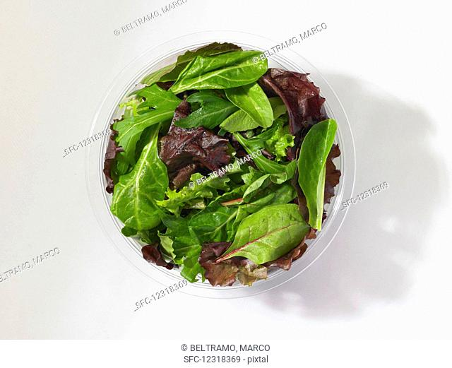 Mixed lettuce leaves in a plastic bowl in front of a white background (seen from above)