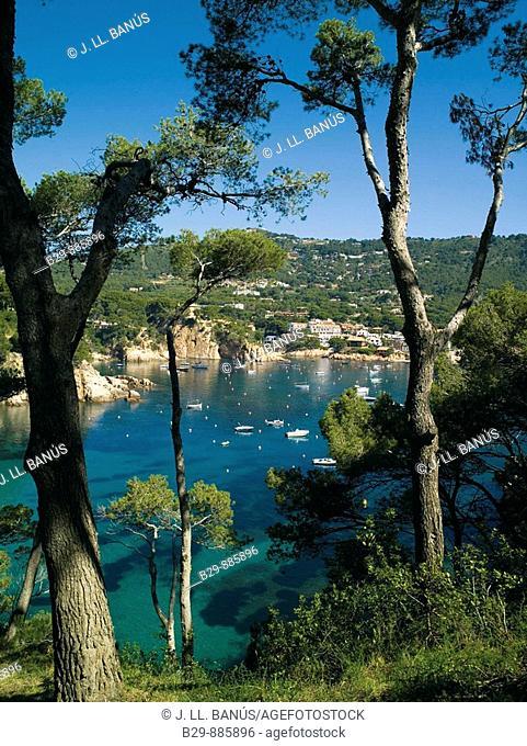 Aiguablava. Costa Brava. Girona province, Catalonia. Spain