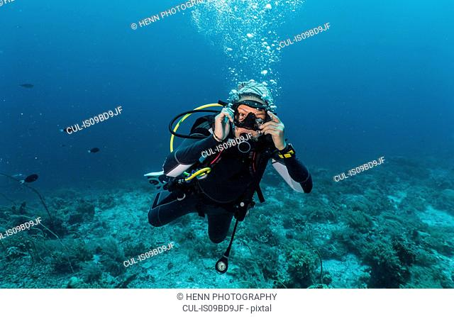 Diver exploring the Tubbataha Reefs Natural Park, underwater view, Cagayancillo, Palawan, Philippines