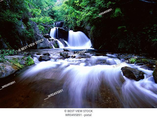 Shennongjia Falls