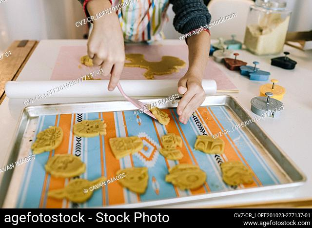 Child setting cookies dough sugar cookies on tray