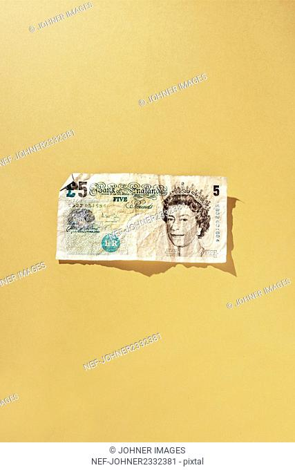 Five pound note, studio shot