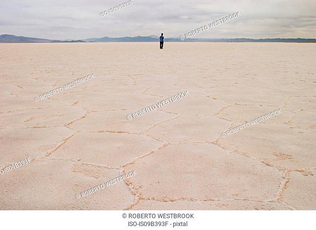 Person standing on salt flat, looking at view, rear view, Salar de Arizaro, Salta Province, Argentina