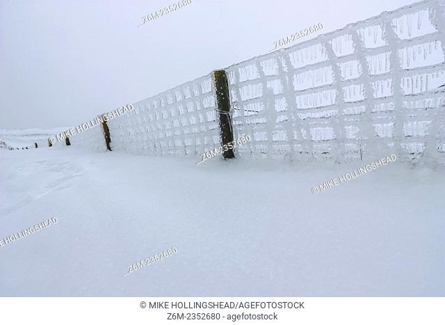 Fence buried in snow and coated in ice following an ice storm which devastates portions of western Iowa January 20, 2009