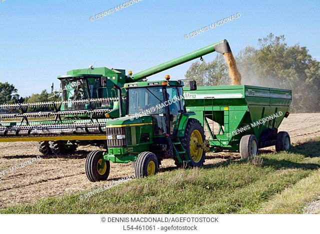 Michigan soybean harvest in early autumn near Port Huron Michigan