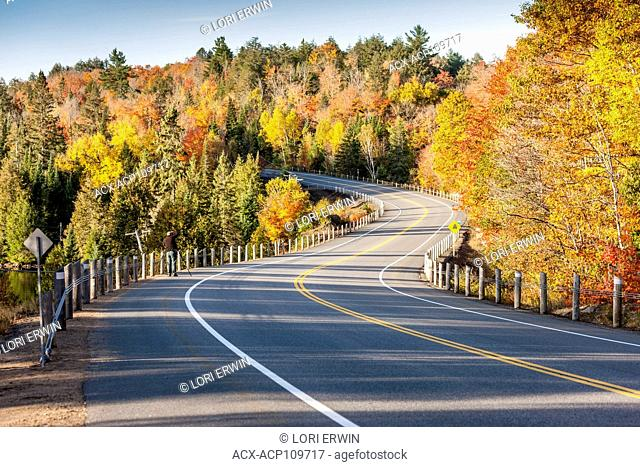 Photographer on Highway 60 in Autumn in Algonquin Provincial Park, Ontario