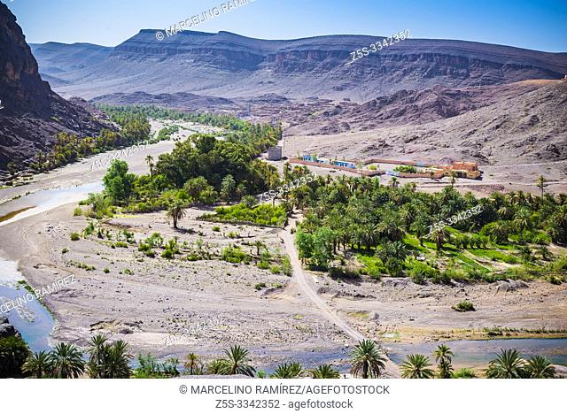 The oasis of Fint in the stony desert. The so-called Door of the Sahara desert. Fint Oasis, Ouarzazate, Drâa-Tafilalet, Morocco, North Africa