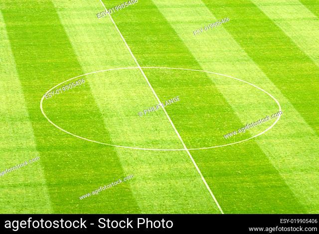 Rasen im Fußballstadion