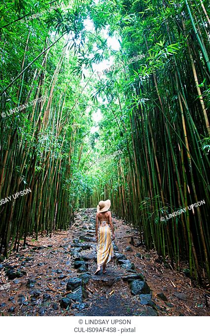 Young woman walking in bamboo grove, Hana, Maui, Hawaii