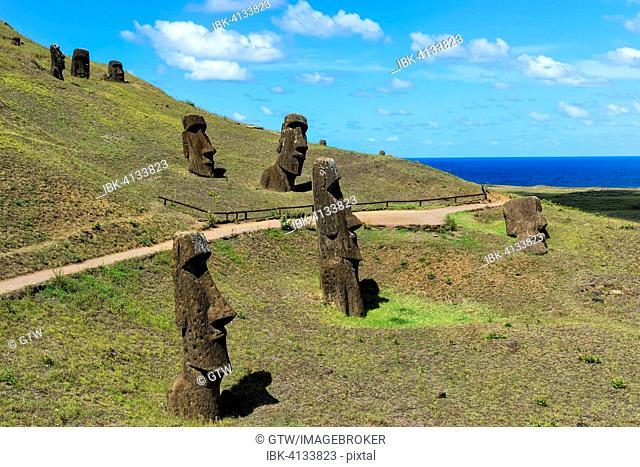 Moais in Rano Raraku, Rapa Nui National Park, Unesco World Heritage Site, Easter Island, Chile
