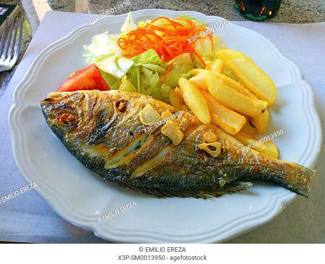 Gilthead and chips